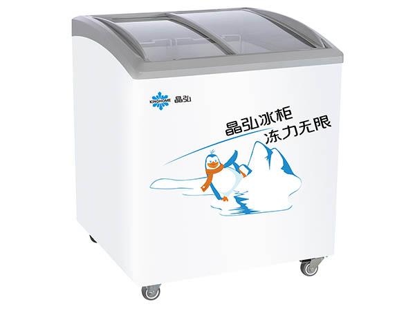 晶弘冰箱商用冰柜 SD-205Z